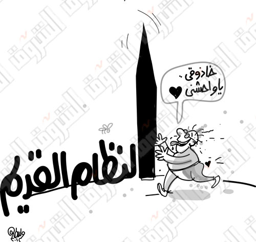 كاريكاتير عن تصويت الناخبين للفريق احمد شفيق ودخوله جولة الاعادة للانتخابات الرئاسية