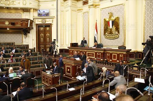 «خارجية النواب»: الشعب أثبت رغبته في بناء الدولة المصرية الحديثة