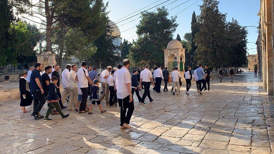 80 مستوطنا يقتحمون باحات المسجد الأقصَى المبارك بحماية شرطة الاحتلال