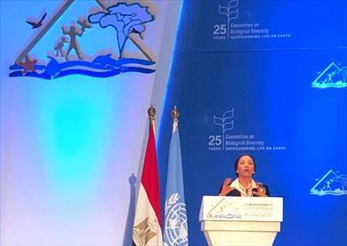 وزيرة البيئة: يجب توحيد الجهود للوصول إلى كوكب أرض صحي وآمن