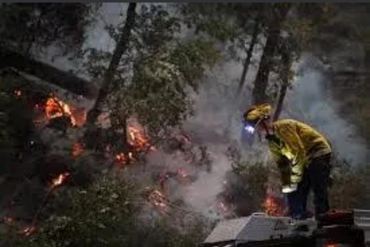 نشطاء حماية البيئة: الأمطار وحدها يمكنها المساعدة في إخماد حرائق الغابات في روسيا