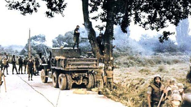 جنّد المئات من العسكريين الأمركيين لقطع الشجرة