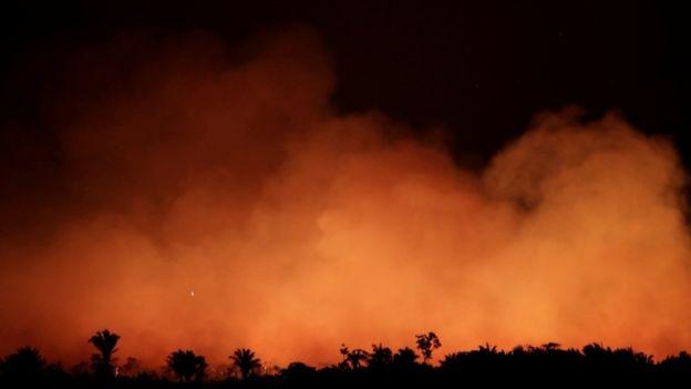 حرائق غابات الأمازون - المصدر: رويترز