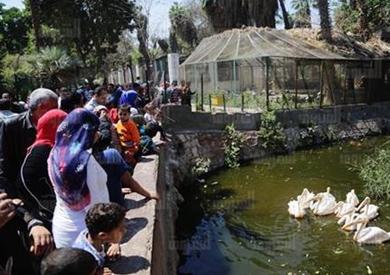 «القومي للمرأة»: انحصار في ظاهرة التحرش.. ورصد 58 حالة بحديقة الحيوان