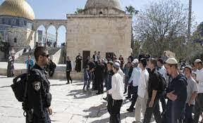مستوطنون يقتحمون باحات الأقصى بحراسة مشددة من شرطة الاحتلال