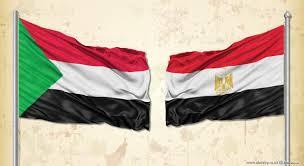 الاجتماع الوزاري للشركاء الإقليميين يؤكد استمرار مصر في تنسيق الجهود الإقليمية لدعم السودان