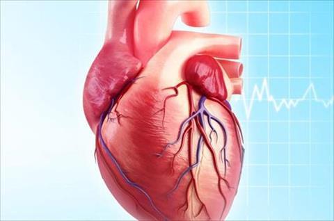 فرمنجهام.. الحكى المستمر لأسرار قلب الإنسان