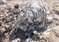 جزء من حطام الطائرة الأوكرانية التي أسقطتها إيران في صورة بتاريخ الثامن من يناير 2020.