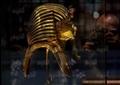 أفتتاح معرض لمقتنيات الملك توت عنخ امون بالمتحف المصري تصوير احمد عبد الجواد