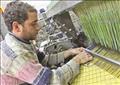 مصانع الغزل والنسيج تصوير فادى عزت