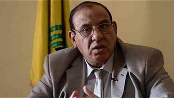الدكتور طلعت عبد القوى رئيس الاتحاد العام للجمعيات الأهلية