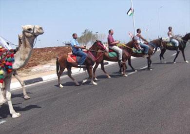 احتفالات شرم الشيخ باقناة السويس الجديدة