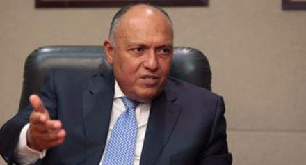 سامح شكري يستقبل وزراء خارجية مجموعة «الفيشجراد»