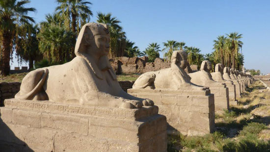 اكتشاف 8 تماثيل لأبو الهول بطريق الكباش