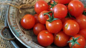الطماطم لم تعد حمراء اللون فقط