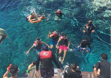 المصرين والأجانب يغوصون بجزيرة تيران في عيد الربيع