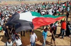 غدا.. تنظيم «جمعة الوفاء للشهداء والجرحى» بغزة