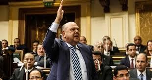 النائب محمد ماهر حامد، عضو مجلس النواب