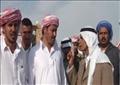 قبائل سيناء ترحب بإنشاء محافظة وسط سيناء