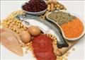 دراسة: «الأطعمة الدسمة هي السبب الوحيد لزيادة الوزن وليس الكربوهيدرات»
