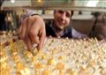استقرار أسعار الذهب محليا.. وعيار «21» يسجل 629 جنيها للجرام