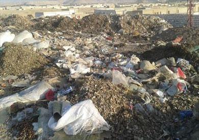 القمامة تغطي مقابر المنيا