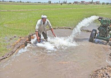 انون الري الجديد يخدم المزارعين ويحافظ على الموارد المائية