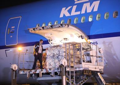 استقبال شحنة لقاح استرازنيكا بمطار القاهرة الدولي