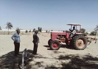 زراعة جنوب سيناء تعيد تأهيل مزرعة أبو كلام بالطور