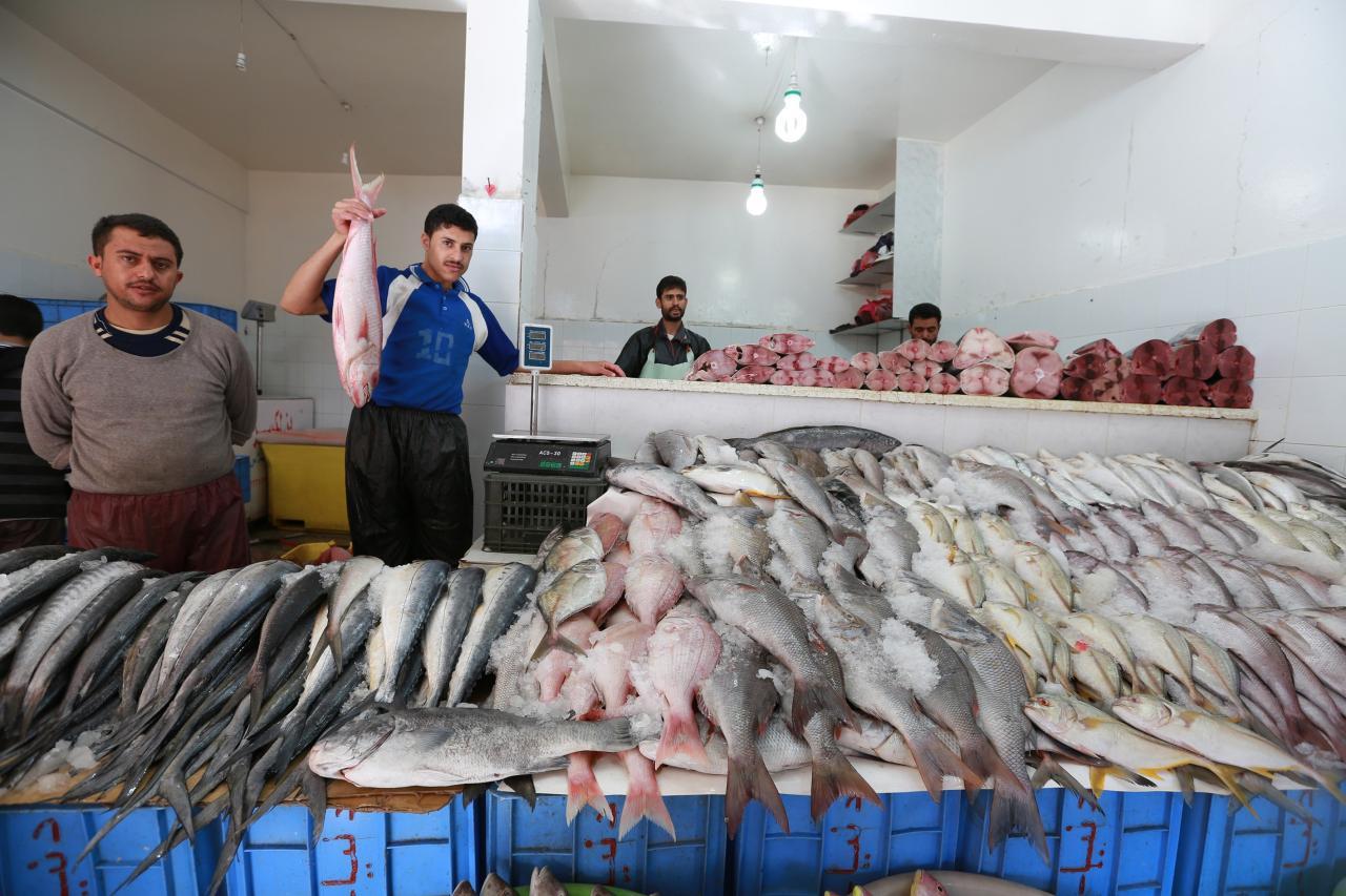 """Résultat de recherche d'images pour """"بيع الأسماك"""""""