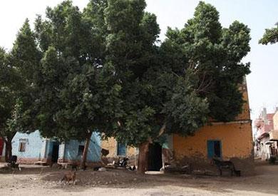 احدى القرى