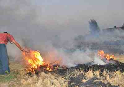 «شؤون البيئة»: السحابة السوداء لم تظهر حتى الآن نتيجة حرق قش الأرز