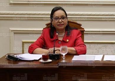 النائبة أنيسة حسونة عضو مجلس النواب