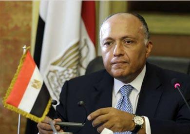 مصادر دبلوماسية: مصر استقطبت دول الحياد فى سوريا خلال اجتماع «وزراء الخارجية العرب»