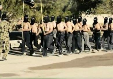 """أعلن التنظيم انضمامه لـ""""داعش"""" في نوفمبر الماضي"""