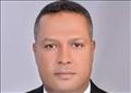 النائب محمد حمزة، عضو مجلس الشيوخ