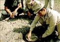 إلزام وزارة الخارجية المصرية بالتحرك دبلوماسيا وقانونيا مع الحكومة البريطانية لنزع الألغام الموجودة فى الصحراء الغربية المصرية