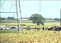 انفجار بالون هوائي يحمل 16 راكبا في أمريكا