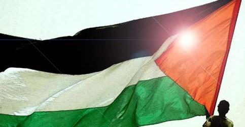 plast flag 31 10