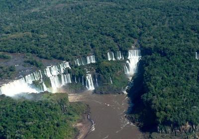 غابات الامازون - ارشيفية