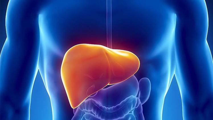 «طبيب مصرى» بأستراليا يكتشف البروتين المسبب لتليف الكبد