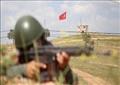 التدخل التركي في الشمال السوري