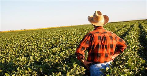 المزارعون الأمريكيون وجها لوجه مع كورونا