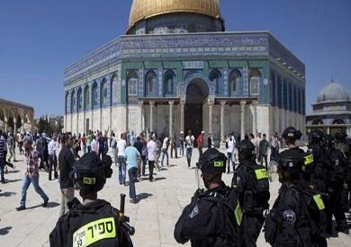 مصادر فلسطينية: مستوطنون يقتحمون المسجد الأقصى بحماية إسرائيلية
