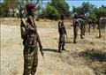 الحدود السودانية