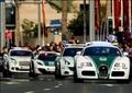 شرطة دبي بالإمارات