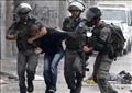 قوات الاحتلال الإسرائيلية